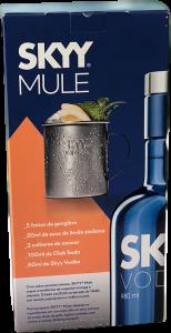Skyy-Vodka-R-3990-back-154x300 Receitas de Drinks para comemorar o Ano Novo